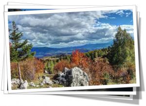 Res till Bosnien - Ecofutura